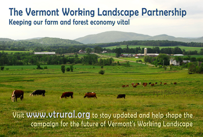 Vermont-working-landscape