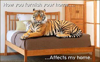 Tiger-save-habitat-vt