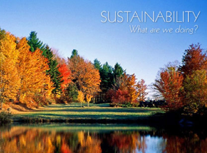 Sustainable-furniture