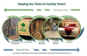 Fsc-chain-custody